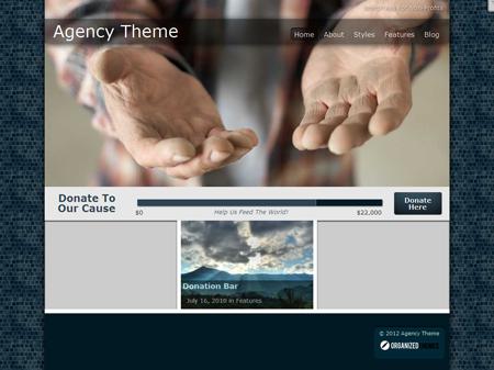 Agency WordPress Theme for Non Profits