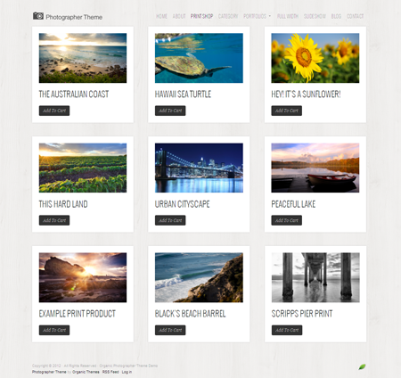 Photographer WordPress Sell Photos Online Theme