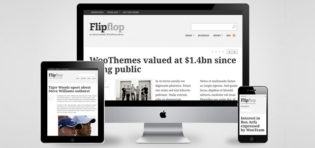 Flipflop Responsive WordPress Theme