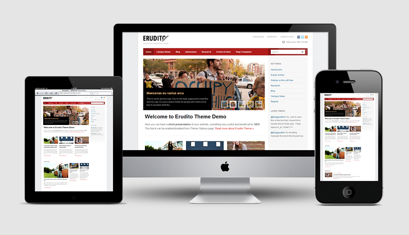 Erudito Responsive WordPress Education Theme