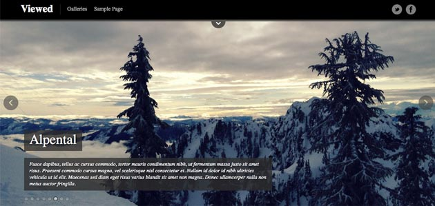 Viewed WordPress Photography Theme