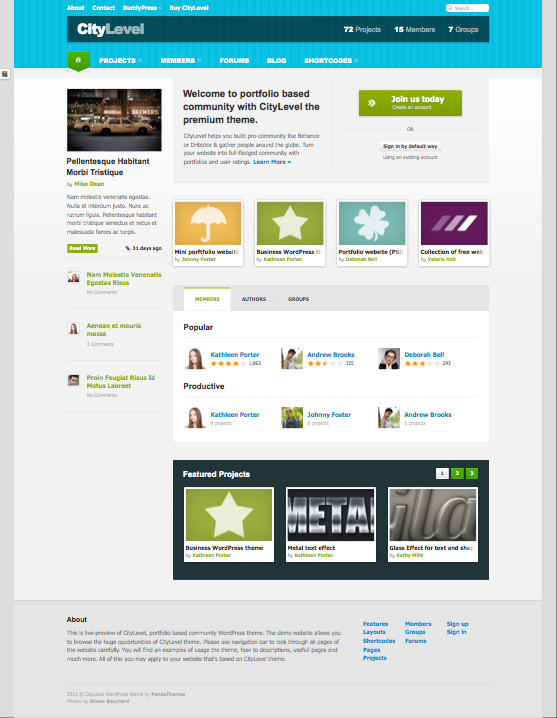 CityLevel WordPress Dribbble Theme