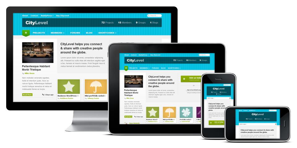 CityLevel WordPress Responsive BuddyPress Theme