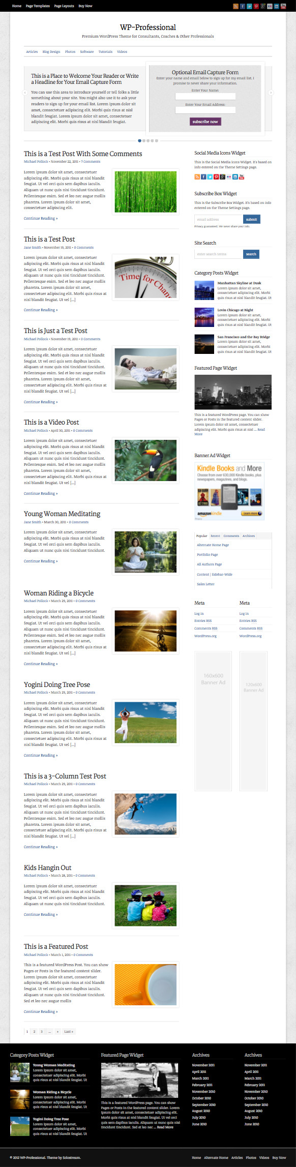 WP Professional Responsive WordPress Theme