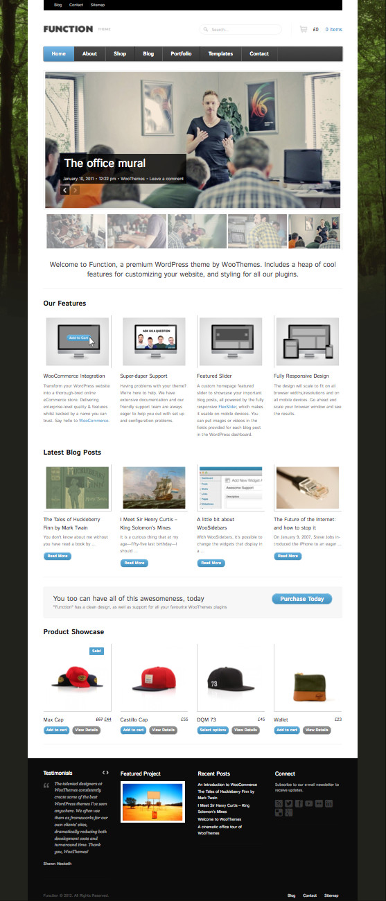 Function WordPress Theme
