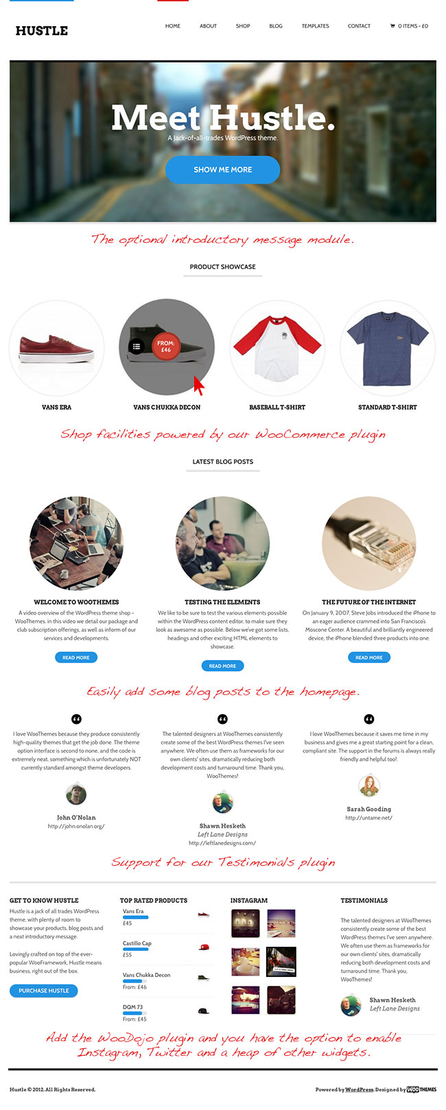 Hustle eCommerce WordPress Theme