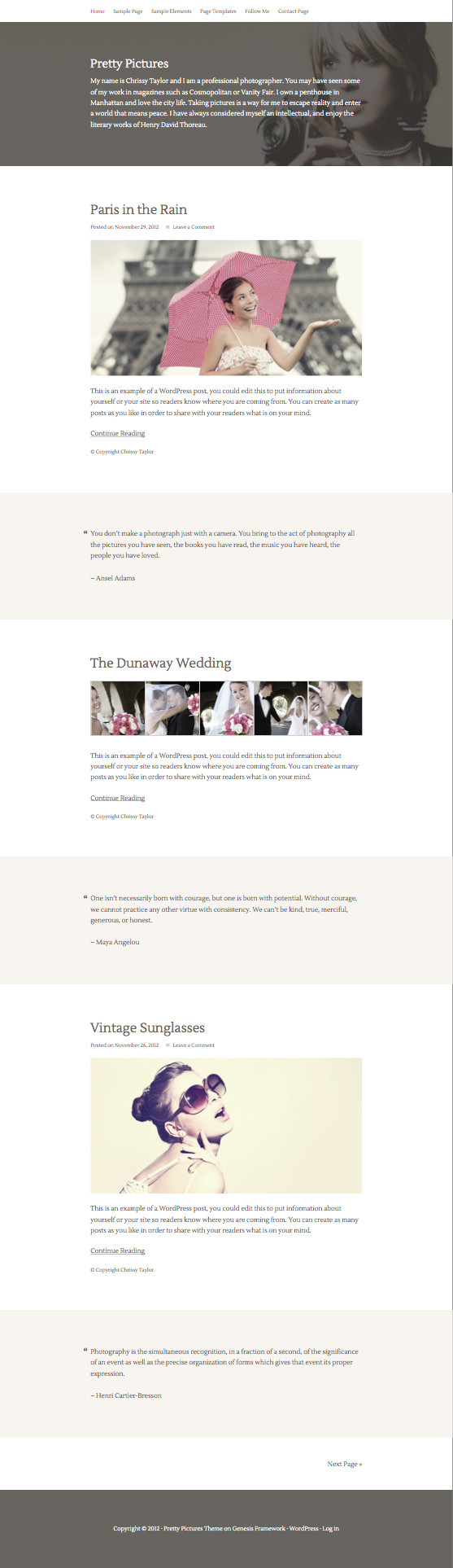 Pretty Pictures WordPress Photographic Theme