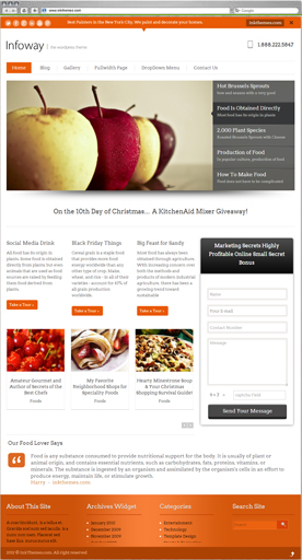 InfoWay Theme for Food Niche