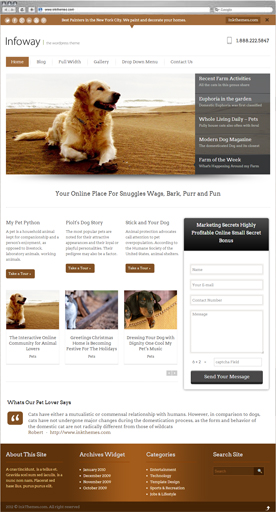 InfoWay Theme for Pets & Animals Niche