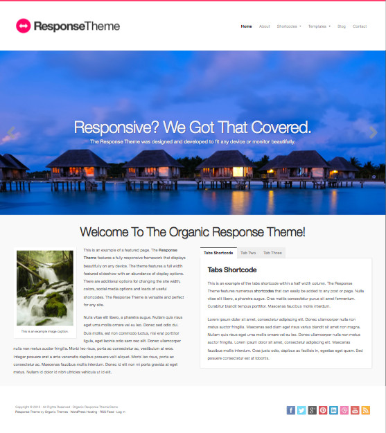 Response WordPress Retina Display Theme