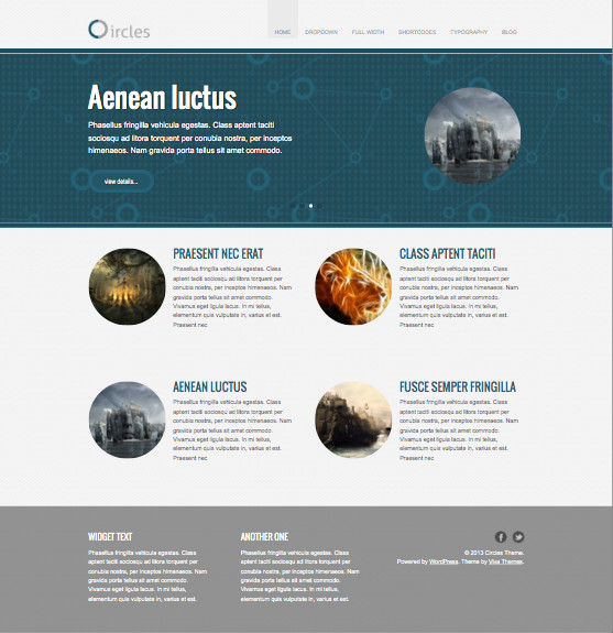Circles Responsive WordPress Business Theme