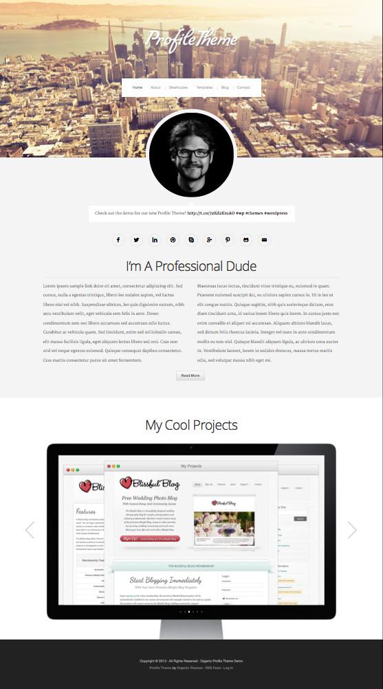 Profile WordPress Online Resume Theme