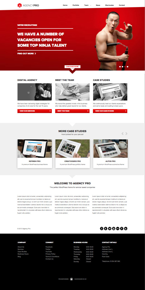 Agency Pro WordPress Corporate Theme