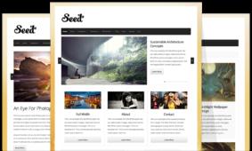 Seed WordPress Retina Optimized Theme