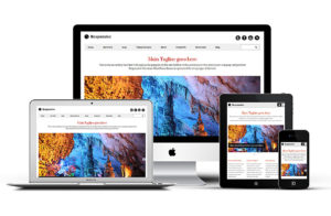 Responsive 2 WordPress Portfolio Theme