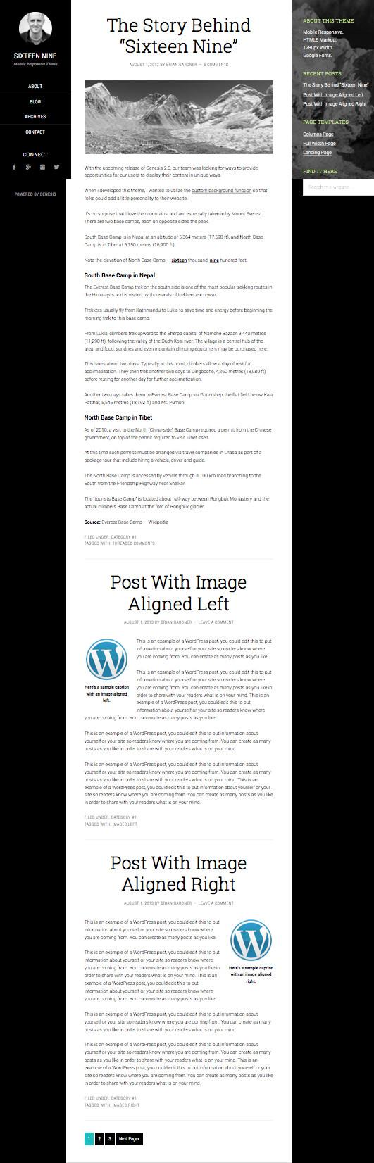 Sixteen Nine Microdata Supported WordPress Theme
