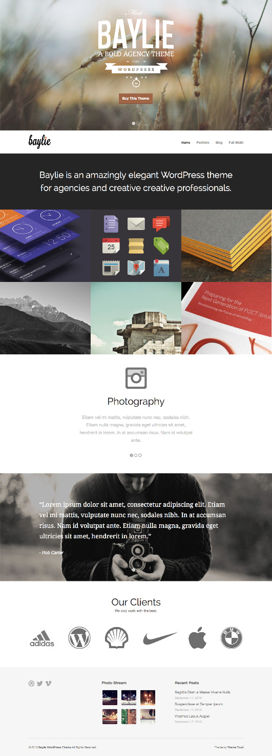 Baylie WordPress Multipurpose Agency Theme