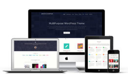 ShowStopper Responsive WordPress One Page Theme