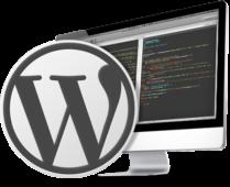 Custom WordPress Design