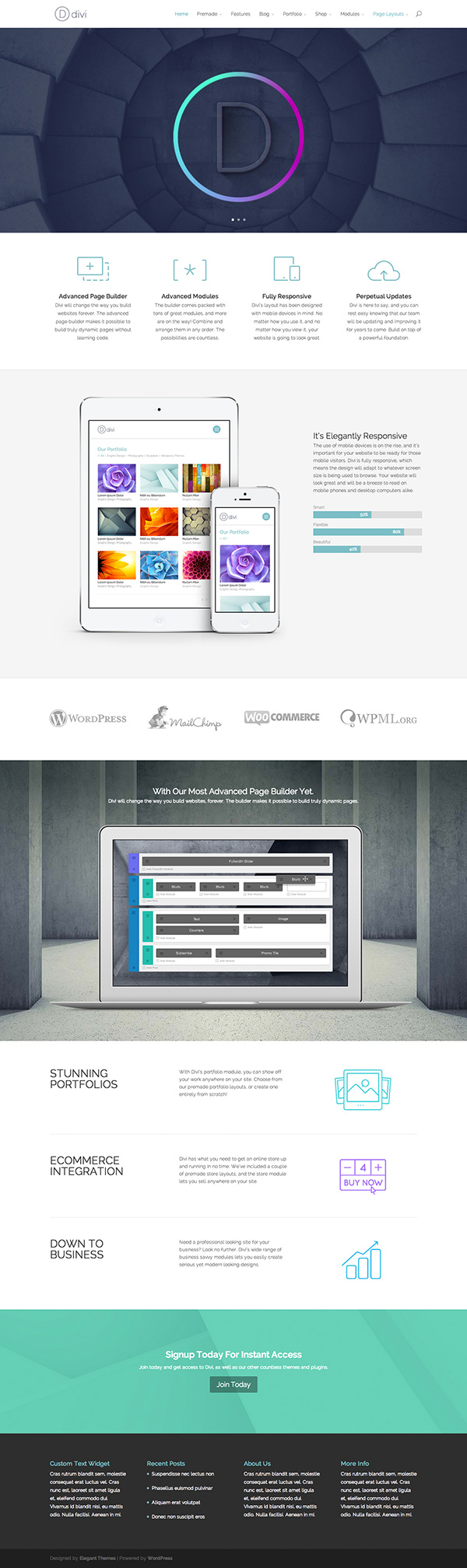 Divi WordPress Theme with Custom Builder