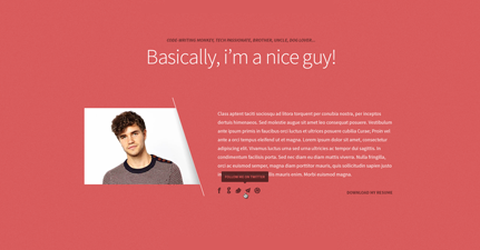 Freelancer WordPress One Page Portfolio Theme
