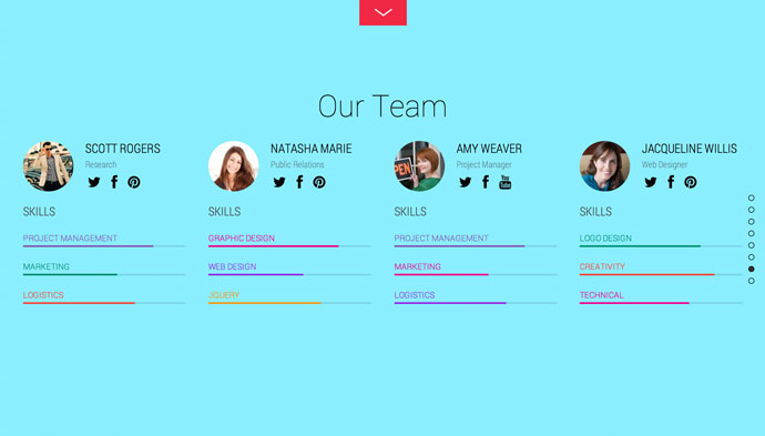 Team Post Type Theme