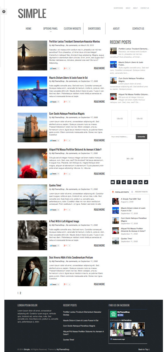 Simple WordPress Blog Theme