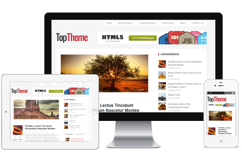 Top Responsive Pixel-Perfect Bloggers Theme