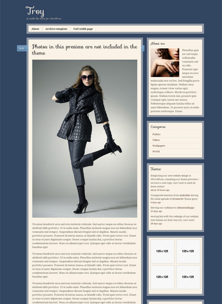 Troy WordPress Tumblr Like Theme