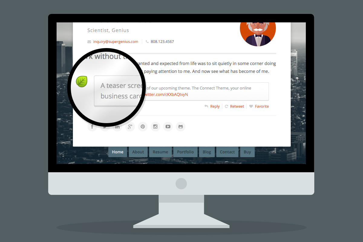 Connect WordPress Personal Profile Theme