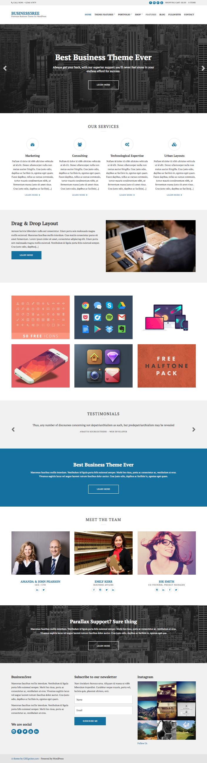 Business3ree WordPress Corporate Service Theme