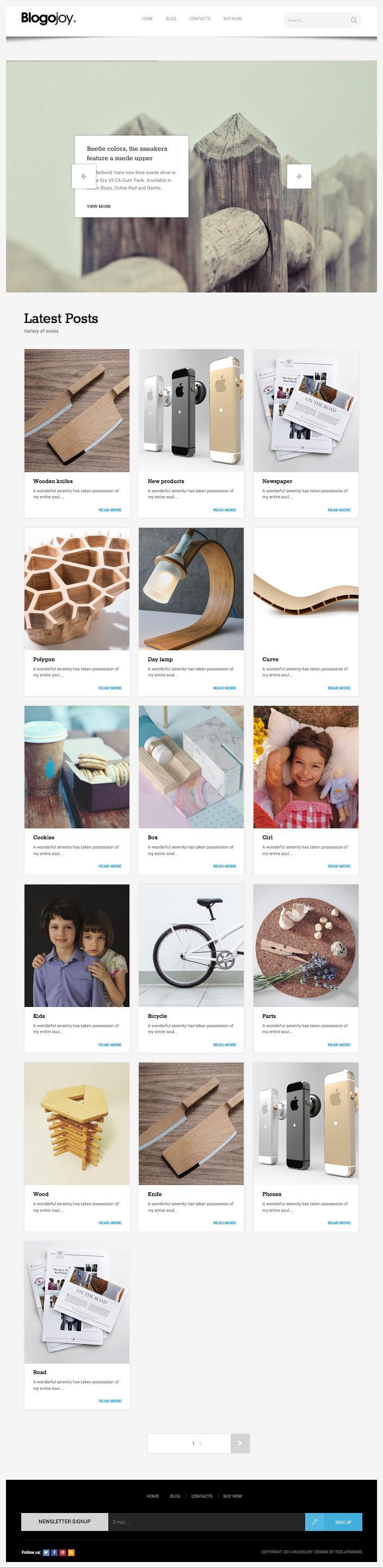 Blogojoy WordPress Minimalist Blog Theme