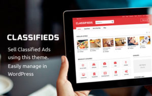 Classifieds WordPress Sell Ads Theme