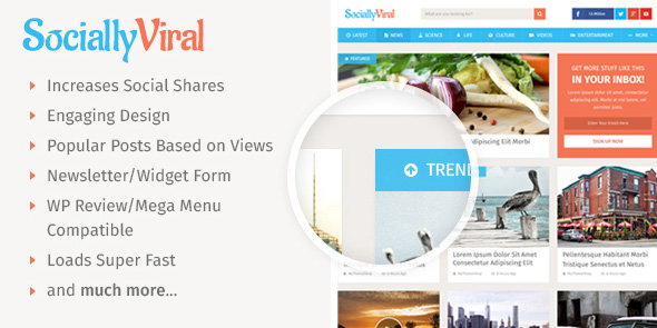 SociallyViral WordPress Social Sharing Theme