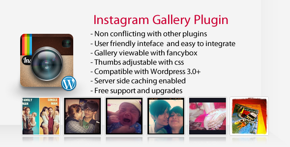 Instagram Gallery WP Plugin