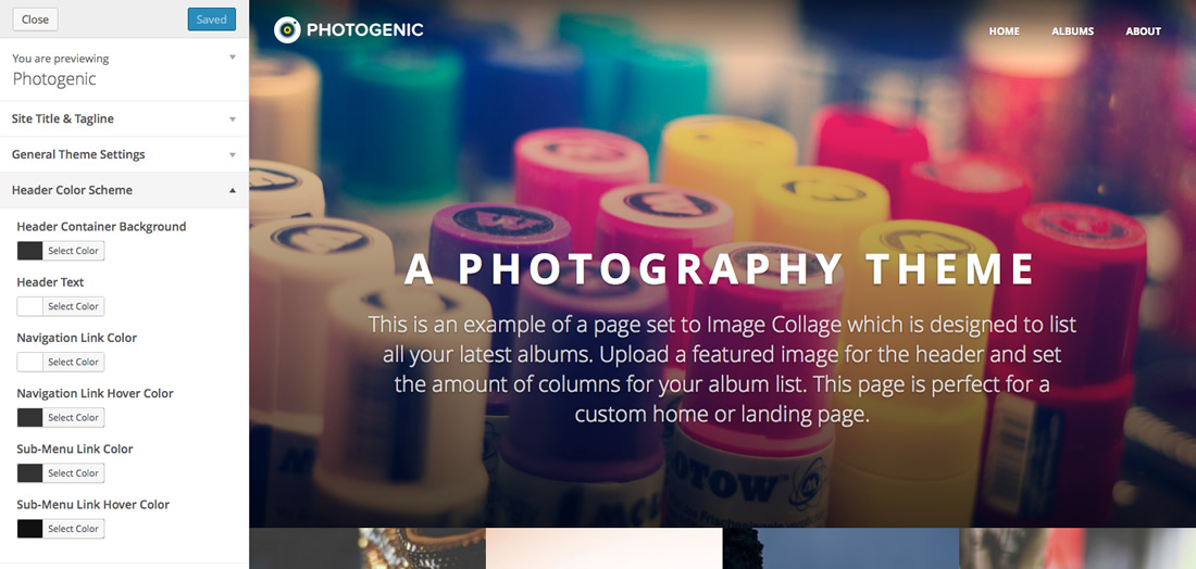 Photogenic WordPress Photo Theme Visual Cusomizer