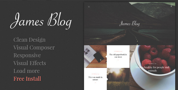 James Blog Simple Personal Blog WordPress Theme