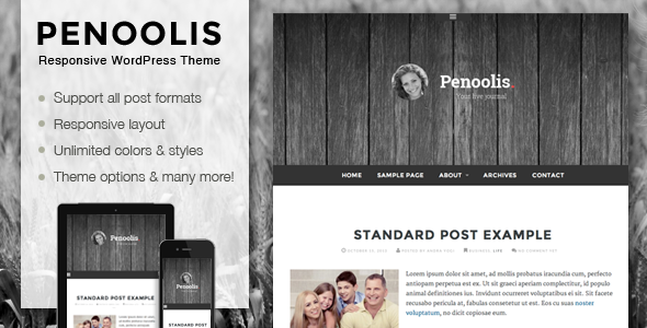 Penoolis WordPress Responsive Personal Blog Theme