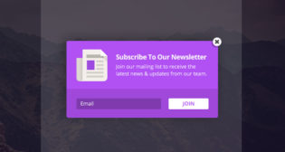 Bloom Automatic Opt-In Pop-Up WP Plugin