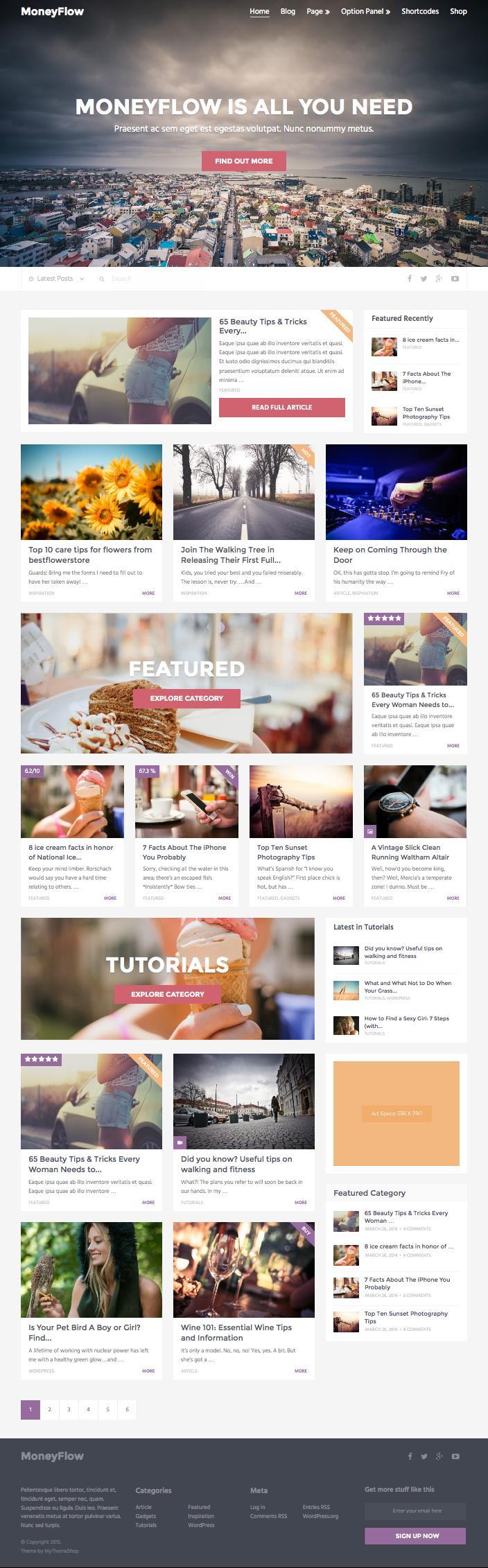 MoneyFlow WordPress Make Money Online Theme