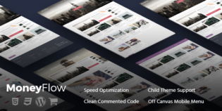MoneyFlow WordPress Moneymaking Theme