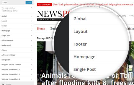 Realtime Customizer NewsPost WordPress Breaking News Theme
