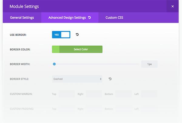 Divi 2.4 WordPress Module Setting Theme