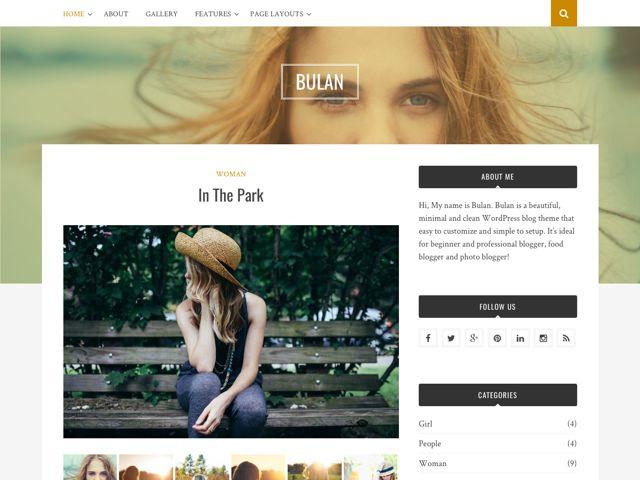 Bulan Free WordPress Professional Bloggers Theme