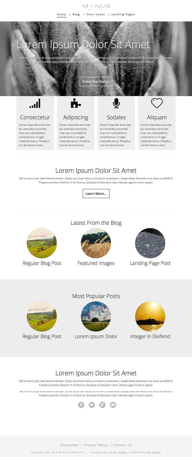 Minus WordPress Landing Page Theme