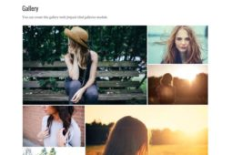 Silvia WordPress Free Grid Layout Creative Photo Theme