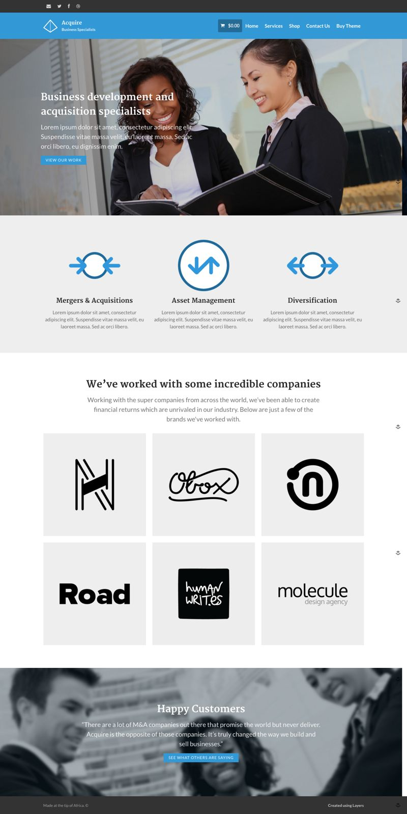 Acquire WordPress Business Specialists Theme