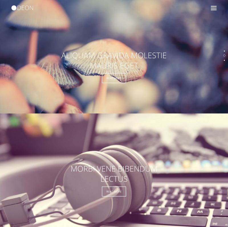 Odeon WordPress Portfolio & Photography Theme