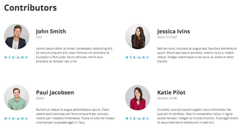 Contributors Page Template - SiteBox Theme