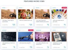 MicroJobEngine WordPress Job Marketplace Theme